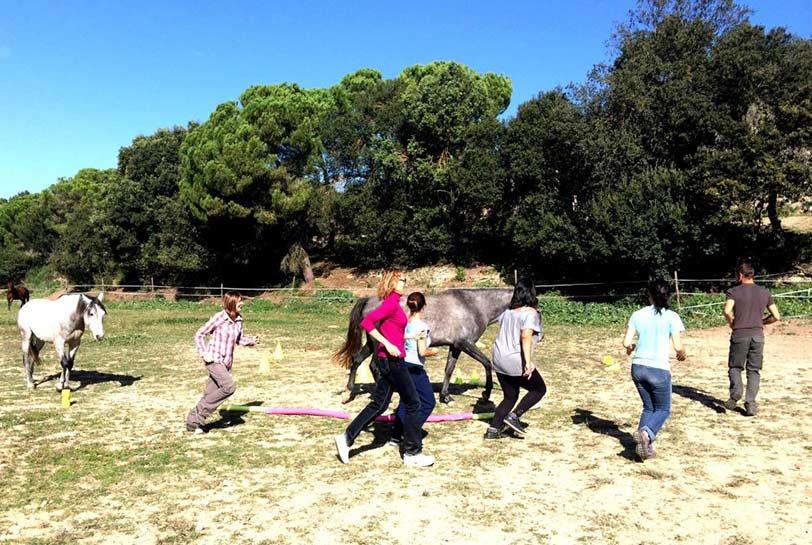 Experiencias de team building al aire libre - Caballos